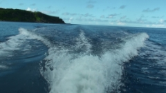 沖永良部島体験ダイビングの質問