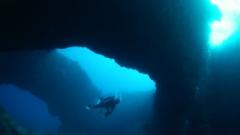 沖永良部島へダイビング専門ツアー
