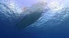沖永良部島のダイビングボート器材