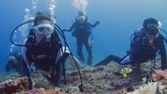 沖永良部島グループで体験ダイビング