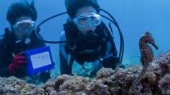 沖永良部島のダイビング器材イメージ