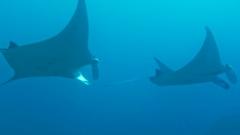 沖永良部島でのダイビング準備