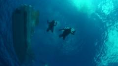 沖永良部島でボート体験ダイビング満喫