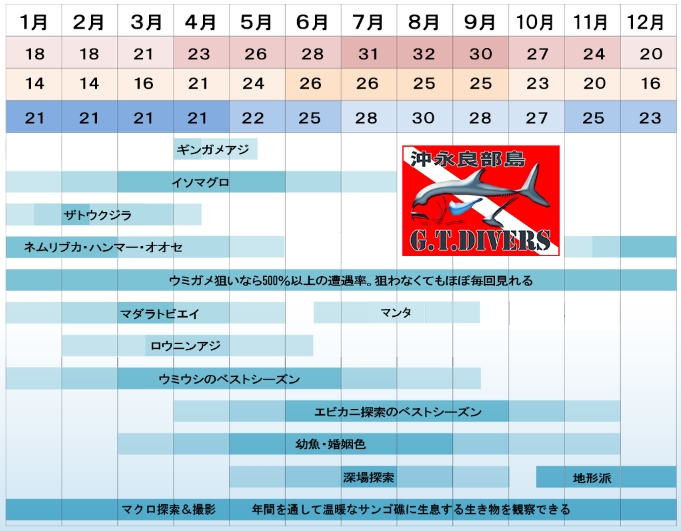 沖永良部島ダイビングシーズンカレンダー