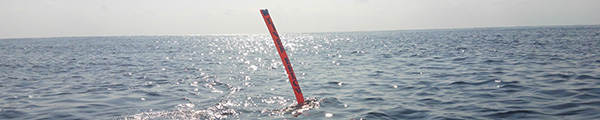 沖永良部島でダイビングステップアップ