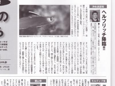 20101112-01MD掲載