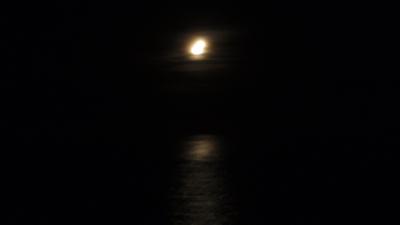 20110617-01ウミガメ観察会の満月