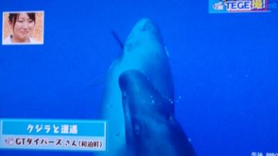20110623-06テレビで放送