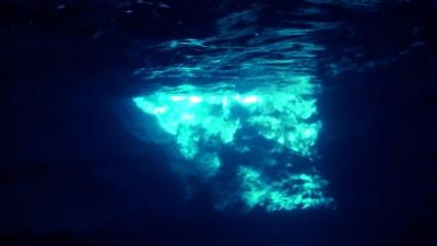 20110701-01超プチ「フーチャ」