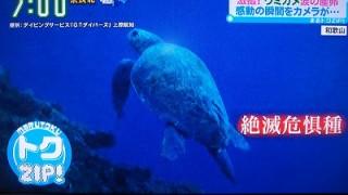 読売テレビ「す・またん」にて