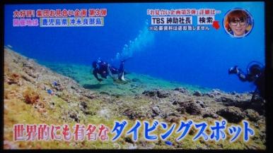 水中映像提供「お見合い大作戦・第3弾 沖永良部島」