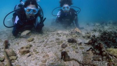 20110814-04体験ダイビング