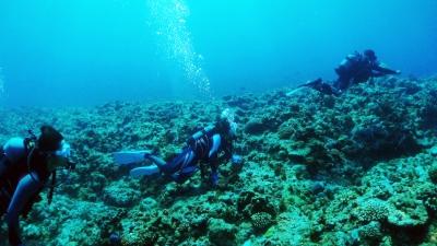 20110816-01体験ダイビング