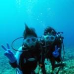 ウミガメに会える体験ダイビング