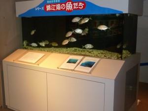 P1060484かごしま水族館