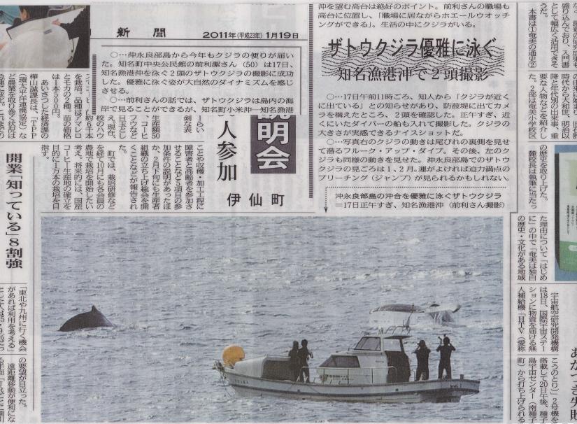 20110120-01南海日日新聞に掲載
