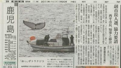 20110121-02朝日新聞