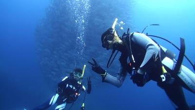 20110329-02ギンガメとダイバー