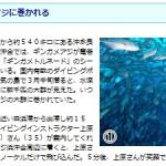 南日本新聞のHPにて