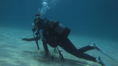 20110425-02体験ダイビング