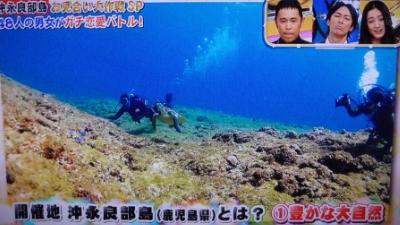 20120117-01お見合いTV沖永良部