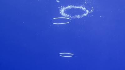 20120210-04バブルリング