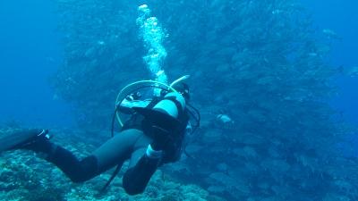 20120220-04ギンガメとゲスト