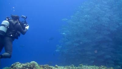 20120303-04ギンガメアジを撮る興克樹さん