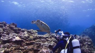 20120315-03ギンガメと銀ちゃんとダイバー