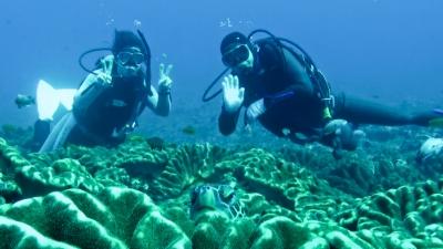 20120325-04アオウミガメとウタ