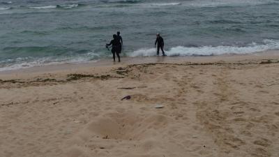 20120526-03ウミガメの産卵巣