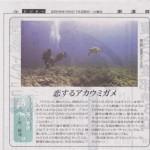 新聞連載 其の1 「恋するアカウミガメ」