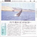 新聞連載 其の2 「クジラ 陸から見つけるには」