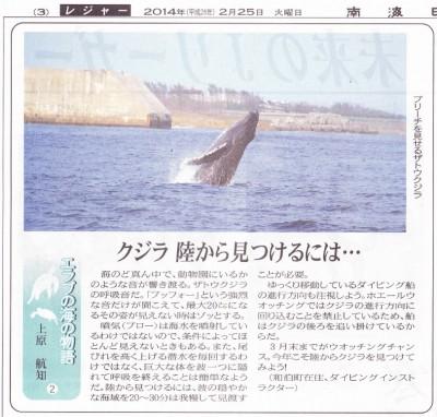 クジラ陸から見つけるには