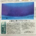 新聞連載 其の3 「白銀色に輝くマグロハリケーン」
