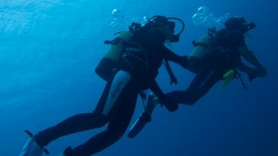 バディ潜水
