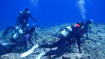 体験ダイビングの写真