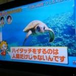 世界スカっと動画大賞にて