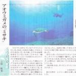"""新聞連載 其の12 「アオウミガメの""""ミサキ""""」(最終回)"""