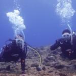 南風&体験ダイビング