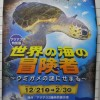 「世界の海の冒険者~ウミガメの謎にせまる~」