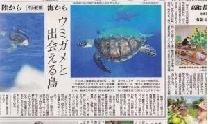 新聞に載りました(ウミガメ編)