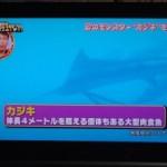 日本スクープ笑学生グランプリ に映像提供