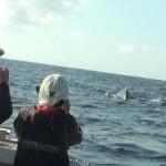 クジラからスタート