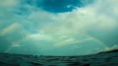 水面から見た虹