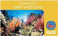 沖永良部島でダイビングアドバンスドコース